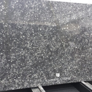 Shell Reef Black Limestone